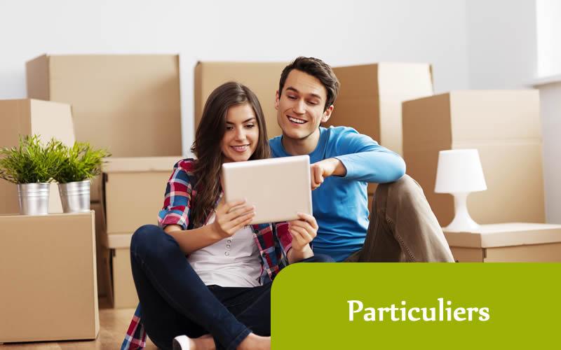 Déménagement de maison pour les particuliers sur Lille